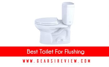 Best Toilet For Flushing